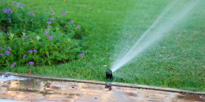3 Reasons All Seniors Should Consider a Sprinkler Installation, Pittsford, New York