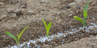 3 Tips for Applying Garden Fertilizer, Bellville, Texas