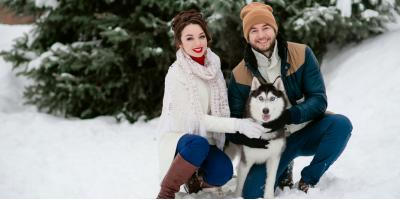 Animal Care Experts Share 3 Tips to Keep Dogs Healthy During Winter, Springfield, Ohio