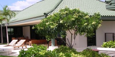 Trees to Select for a Fragrant Hawaiian Garden, Kailua, Hawaii