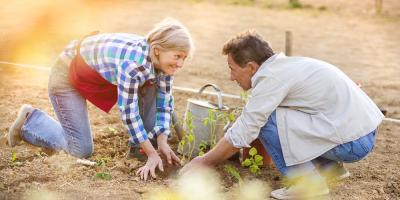 Key Reasons Your Plants Need Quality Topsoil, Bayfield, Wisconsin