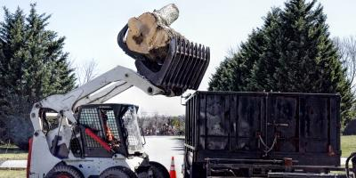 4 Reasons Tree Removal Is Vital for Your Business, Anchorage, Alaska