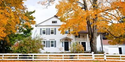 A Homeowner's Guide to Fall Tree & Shrub Care, Jessup, Maryland