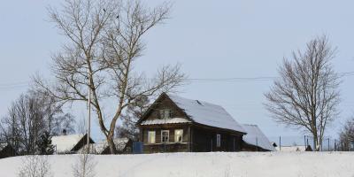4 Benefits of Tree Trimming in Winter, Hamilton, Ohio