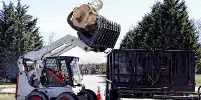 3 Reasons You Should Hire a Professional to Handle Your Tree Work, Blue Ash, Ohio