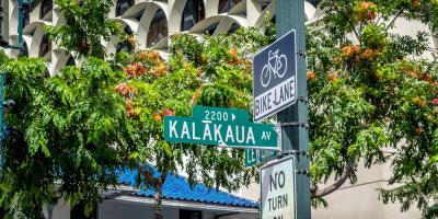 4 Benefits of Street Trees in Hawaii, Makawao-Paia, Hawaii