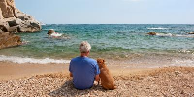 4 FAQ About Pet Trusts, Honolulu, Hawaii