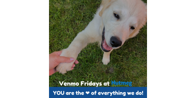 #VenmoFriday: Kick-off payday right and be a HERO to a local pet in need!, Stratford, Connecticut