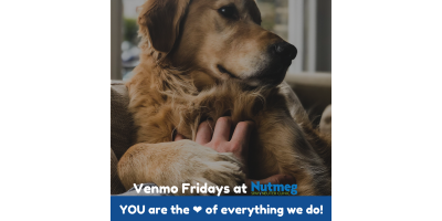 #VenmoFridays: Give today. Feel Good Tomorrow. Having lasting impact forever., Stratford, Connecticut