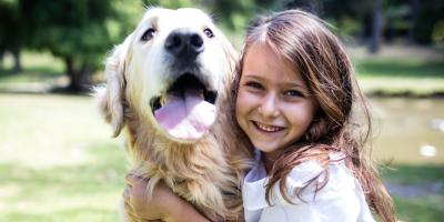 Milford Vet Explains How to Treat Pet Allergies, Milford, Ohio