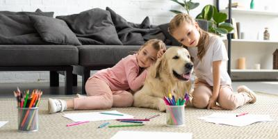 Do's & Don'ts of Adopting a New Pet, Prairie du Chien, Wisconsin