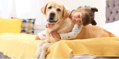 3 Tips for First-Time Dog Owners, Versailles, Kentucky