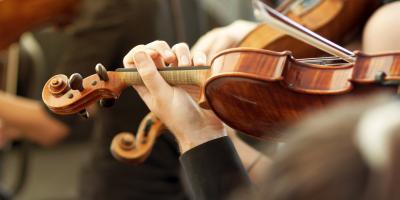A History of the Violin, Brighton, New York