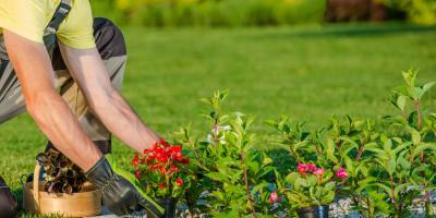 3 Ways to Disguise Water Wells in Your Garden, Bremerton, Washington