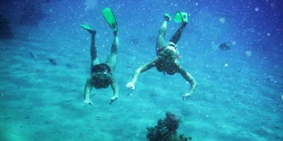 3 Reasons to Bring Your Date on a Snorkeling Tour, Waianae, Hawaii