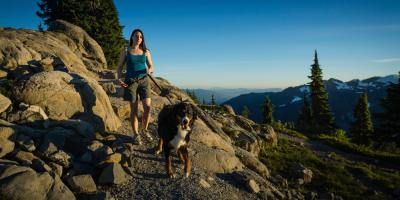 Veterinarians Share 5 Safety Tips for Hiking With Your Dog, Ewa, Hawaii