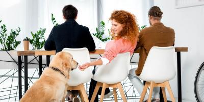 Is It Okay to Feed Dogs Holiday Table Scraps?, Ewa, Hawaii