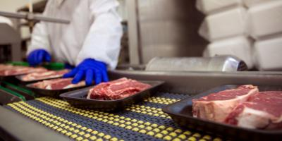 A Brief Guide to Safe Food Handling in the Warehouse, Honolulu, Hawaii