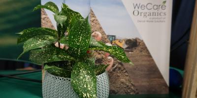 The Basics on Organic Waste & Compost, Henrietta, New York