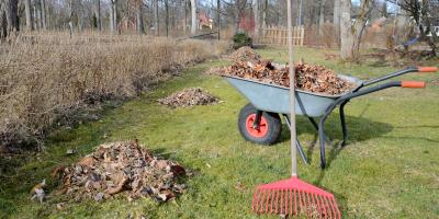 5 Ways to Get Your Lawn Spring-Ready, Foristell, Missouri
