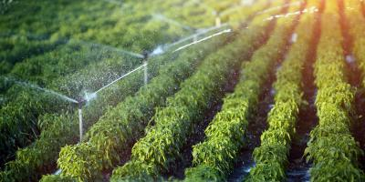 3 Ways to Maximize Irrigation With Water Well Drilling, Madison, Pennsylvania