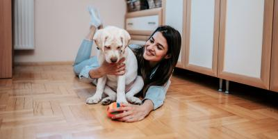 3 Questions Pet Owners Should Ask When Choosing New Flooring, Wentzville, Missouri