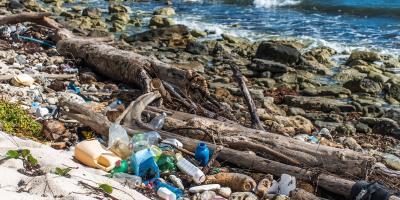 5 Ways Plastic Water Bottles Hurt the Environment, Lake St. Louis, Missouri