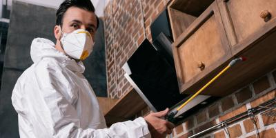3 Reasons to Have a Pest Control Inspection Before Buying a Home, West Plains, Missouri