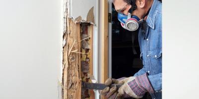 3 Signs Your Home Needs Termite Treatment, West Plains, Missouri