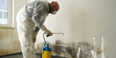 What's the Difference Between Mold Removal & Remediation?, Whitefish, Montana
