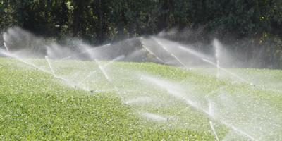How Lawn Sprinklers Prevent Brown Patches, Lincoln, Nebraska