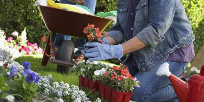 Nursing Home Shares 3 Fun Spring Activities for Seniors, Pulaski, Wisconsin