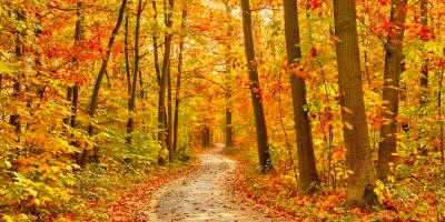5 Ways to Enjoy Fall on the Great River Road, Holmen, Wisconsin