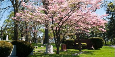 When Is the Right Time to Purchase a Cemetery Plot?, La Crosse, Wisconsin