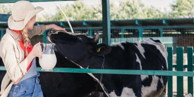 What Are the Best Practices for Dairy Farming?, Adams, Wisconsin
