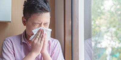 Why You Should Install an Air Filter to Eliminate Allergens, Wisconsin Rapids, Wisconsin