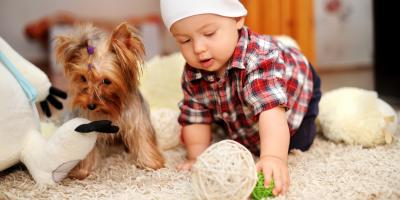 4 Products to Avoid When Carpet Cleaning, Grand Rapids, Wisconsin