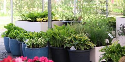 Top 4 Ways to Boost Indoor Air Quality This Summer, Grand Rapids, Wisconsin