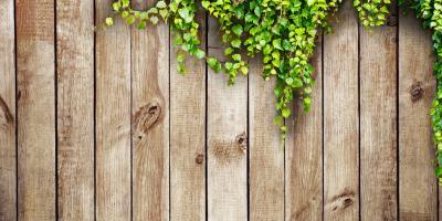 3 Essential Wood Fence Maintenance Tasks to Perform This Spring, Greensboro, North Carolina