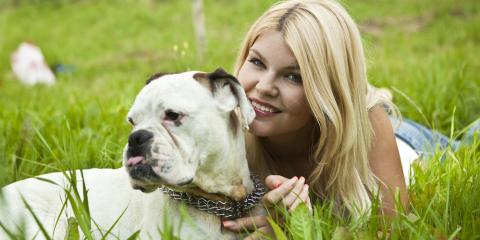 Pet Dermatology Experts Discuss What You Need to Know About Dogs & Poison Ivy, Sharonville, Ohio