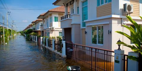 How Floods Affect Termites, Hilo, Hawaii
