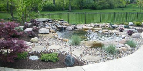 Water garden and pond info from sierra fish pets renton for Sierra fish and pets