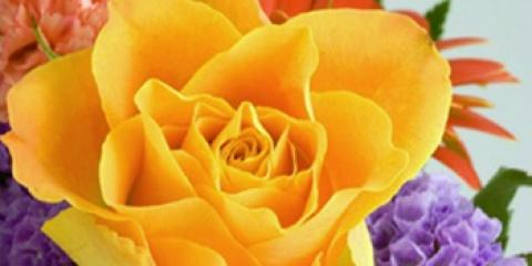 Can't Tell a Rose From a Begonia? 3 Tips to Make Decorating With Flowers Easy, Hamden, Connecticut