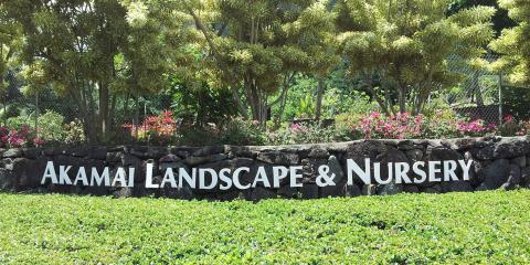 Top 3 Pots & Planters of the Summer, Koolaupoko, Hawaii
