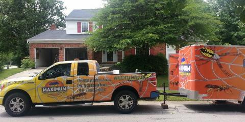 Control Summer Pests With Maximum Termite & Pest Control, Tate, Ohio