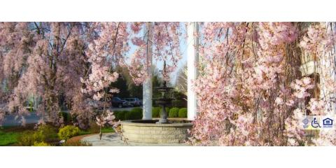 Colonial Heights & Gardens, Assisted Living Facilities, Health and Beauty, Florence, Kentucky
