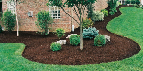3 Essential Pre Fall Lawn Care Services From Lawns By Design, Sycamore, Ohio