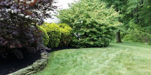 Keystone Blueline Landscape Co, Lawn Care Services, Services, Douglassville, Pennsylvania