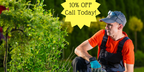 Landscaping is Even Better at 10% Off - Call Today!, Batesburg-Leesville, South Carolina