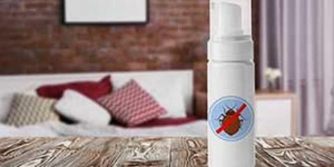 Protect Against Bed Bugs, New Braunfels, Texas